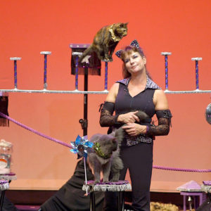 DOC NYC: Samantha's Amazing Acrocats